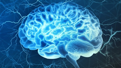 Scientists turn brain signals into speech, may help people who cannot talk