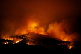 57 killed in deadly forest fire in Portugal