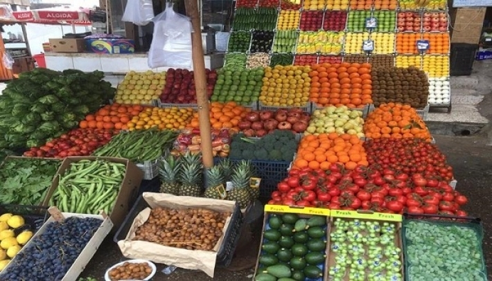 The opening of an international fair in Erbil for agricultural products