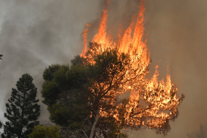 In pictures...Wildfires rage in Lebanon