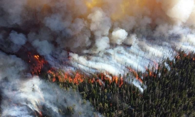 Climate change increases the risk of wildfires